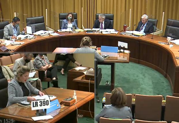 Woman testifying before legislative committee