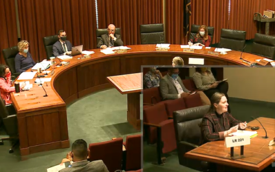 FFN testifies at LR221 hearing on maternal and infant mortality and morbidity